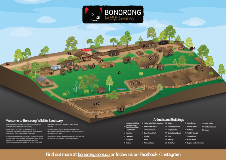 Bonorong Wildlife Sanctuary Map 29