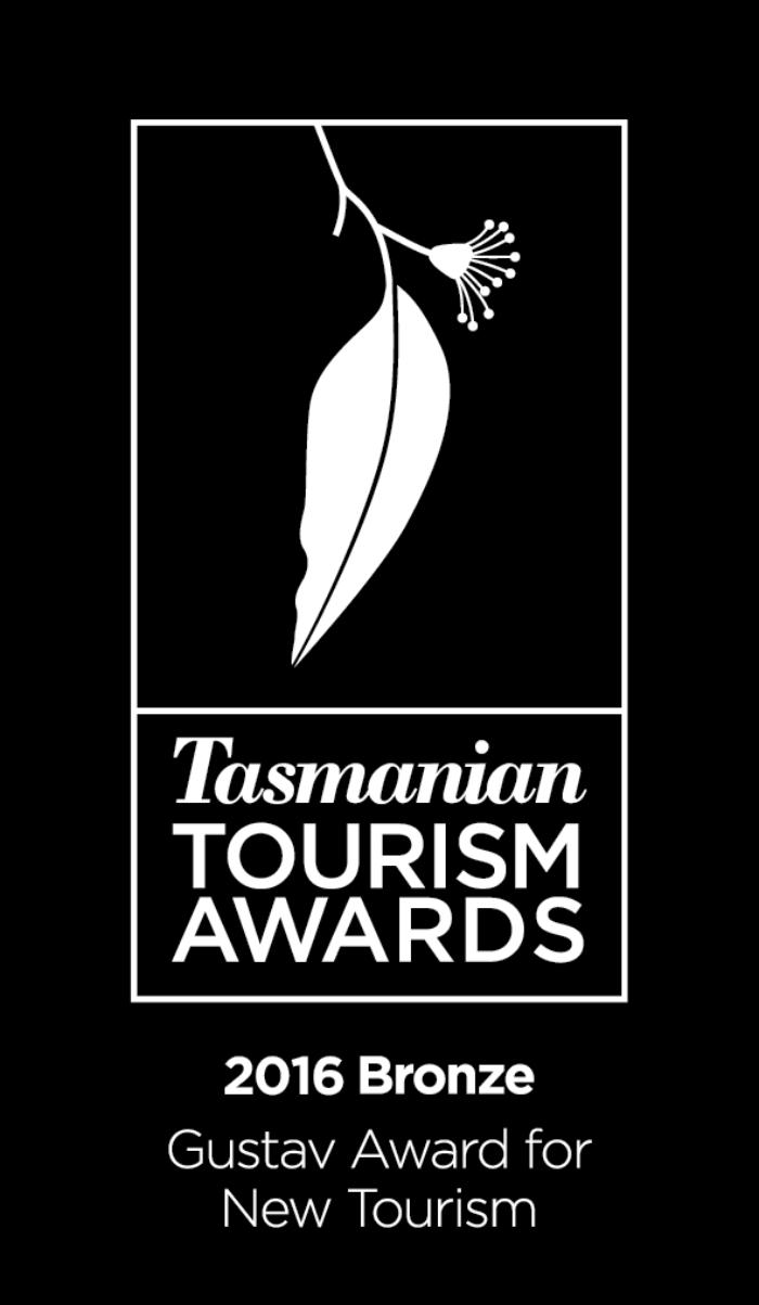 Bronze Gustav Award New Tourism 2016 Reversed
